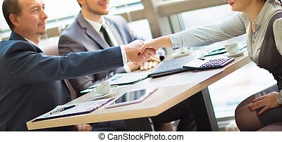 Business handshake. Handshake of two business men closing a...