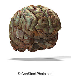 older human brain - rendering of a human brain which look...