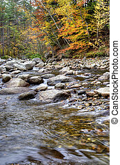 Autumn River Foliage