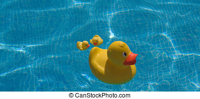 Family of Three Yellow Plastic Bath Toy Duck on a Pool