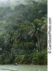 rainforests rainy day - tropical jungle river on a rainy day...