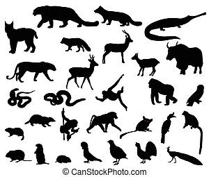 Animals of Asia - Collection of silhouettes of animals...