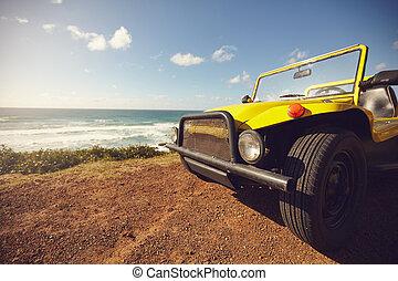 calesa, coche, en, hermoso, paisaje,
