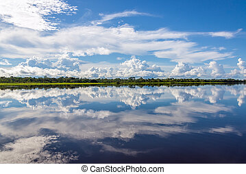 Amazonian Reflection - Sky reflected in water on a lake in...