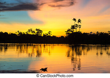 Colorful Amazonian Sunset - Colorful sunset deep in the...