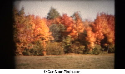 8mm Vintage - 60s Autumn Colors Pa - This footage is a home...
