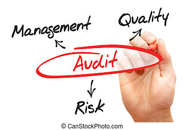 Audit - Hand writing with marker Audit concept