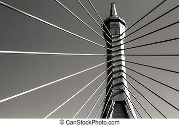 rope bridge - monotone Architecture abstract with rope...