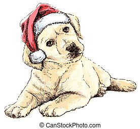 Labrador Retriever with santa claus hat hand drawn vector ,...