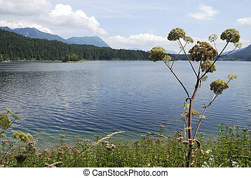 Lake Eibsee in the Bavarian alps...