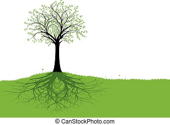 Vector Tree and Roots - Vector tree with roots and green...