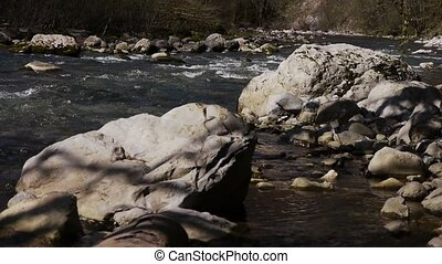 Mountain River among Trees and Stones in Gorge 8 - Mountain...