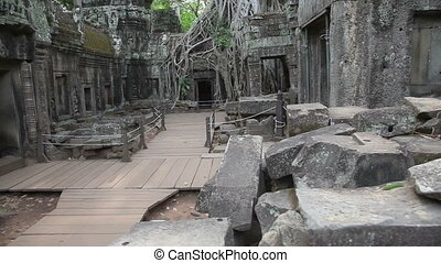 Ta Prohm temple slider filming 7673 - Ta Prohm temple in...