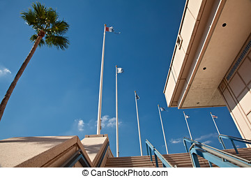 Flags at Downtown Tampa