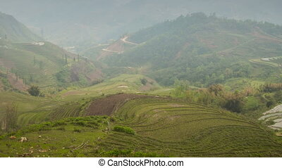 Rice terraces in Sa Pa zoom timelapse 01 - Sa Pa, is a...