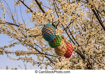 Eggs in a tree