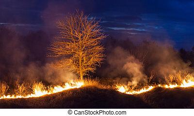 Bushfire at night - Large bright fire of bushfire at night