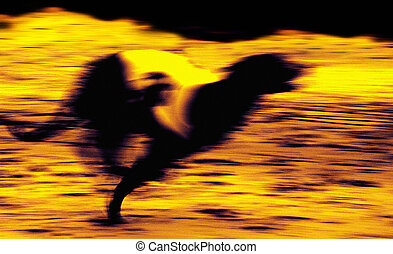 Graphic blur of a greyhound racing on a track.