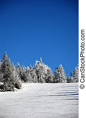 Skiing hill on a winter sunny day