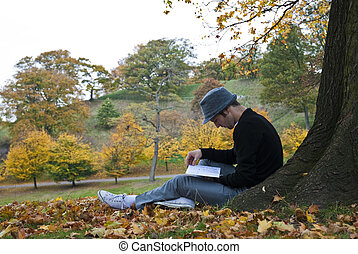 Autumn - Young man reading under a tree in the park during...