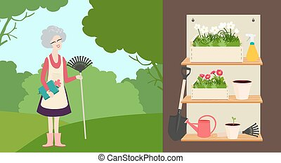 Elderly woman with a rake - An elderly woman with a rake in...