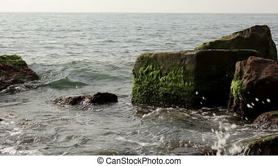 Sea stones covered with algae - Small waves breaking on the...