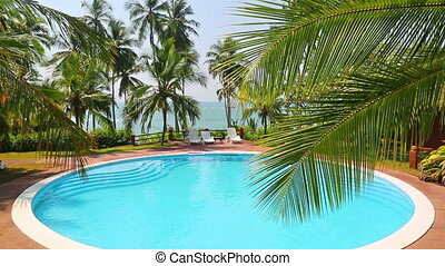 palm leaf and swimming pool by the sea on a tropical resort