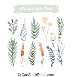 Print - Set of handpainted watercolor vector flowers and...