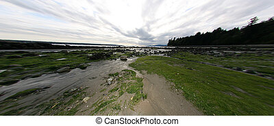 Stanley Park, Vancouver, BC, Canada - Stanley Park, One of...