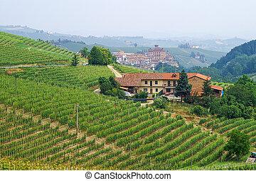 viñas, en, Piemont, el pasar por alto, el, pueblo,...