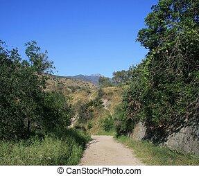 San Dimas Canyon - Fire road descending through trees in the...