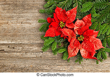 christmas tree branch with poinsettiaon wooden background -...