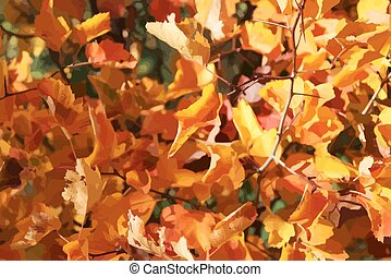 Autumn foliage of Hawthorn on the background