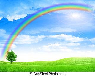 rainbow - green landscape and rainbow on solar sky