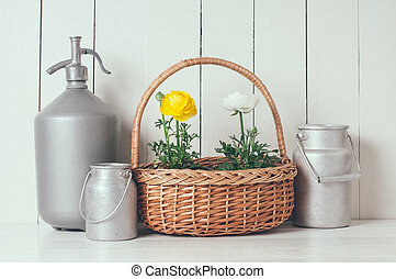 home decor - Fresh natural spring flowers buttercups in pots...