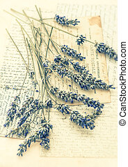 dried lavender flowers and old love letters. nostalgic still...