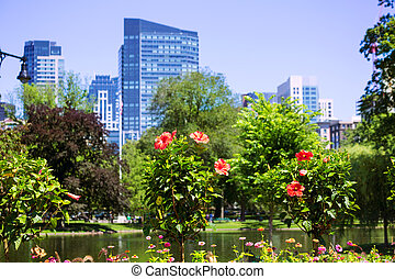 Boston Common park gardens and skyline