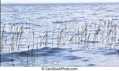 lake natural background summer water wave - lake, natural...