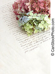 old handwriting and soft hortensia flowers. romantic vintage...