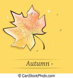 Maple leaf illustration with water drops