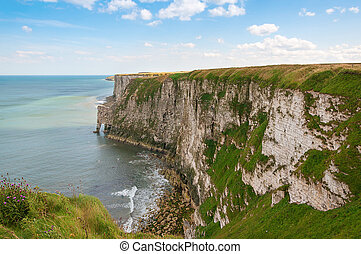 Chalky cliffs at Bempton in Yorkshire UK - Bempton Cliffs...
