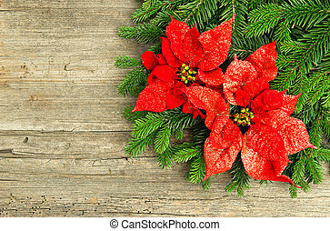 christmas tree branch with poinsettia on wooden background -...