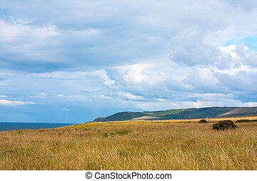 Sunny landscape with fields and blue sky in Scotland