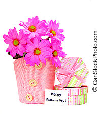 Mother's Day gifts of potted pink daisies and gift boxes