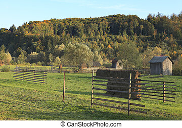 Landscape in Bucovina,Romania - Landscape in a rural area...