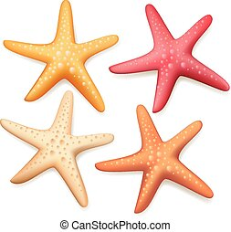 Realistic Colorful Starfish Set in White Background for...
