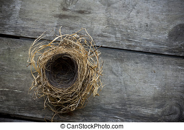 Empty bird nest - Small empty bird nest, looking down,...