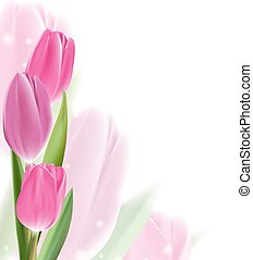 Realistic Colorful Tulips in Isolated Background Editable...