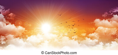 Panoramic sunset - High resolution evening sky background....