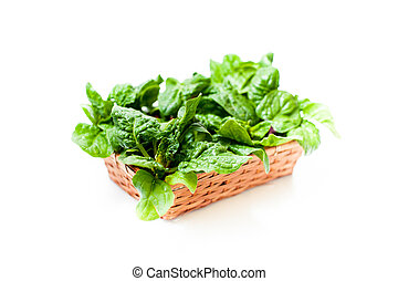 Bunch of green raw spinach leaves close up differential...